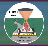 winner of the rat race